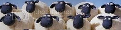 moresheep400100.jpg