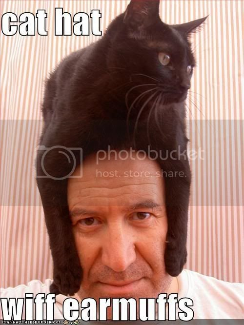 funny-pictures-cat-hat-head.jpg