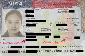 form i 485 nonimmigrant visa number  form I-17 question about NIV# - Adjustment of Status (Green ...
