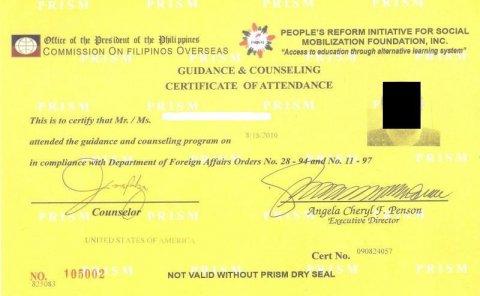 Philippines CFO Yellow Copy Example